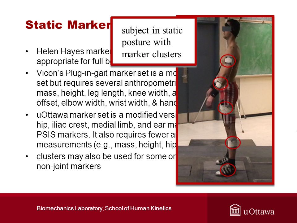 Static Marker Sets Helen Hayes marker set was a early simplified system but is not appropriate for full body 3D analyses Vicons Plug-in-gait marker se