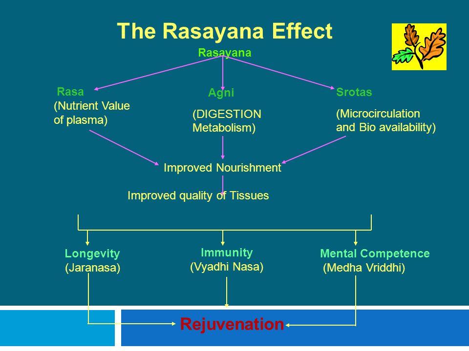 The Rasayana Effect Rasayana Rasa (Nutrient Value of plasma) Agni (DIGESTION Metabolism) Srotas (Microcirculation and Bio availability) Improved Nouri