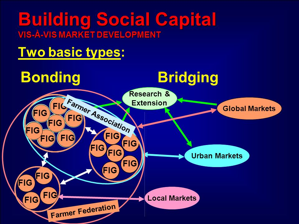 Building Social Capital VIS-À-VIS MARKET DEVELOPMENT Two basic types: Bonding Research & Extension Bridging Local Markets Urban Markets Global Markets