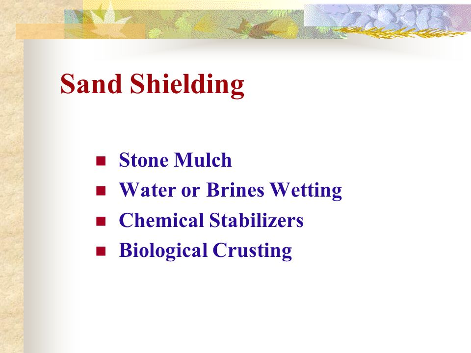 Sand Shielding Stone Mulch Water or Brines Wetting Chemical Stabilizers Biological Crusting
