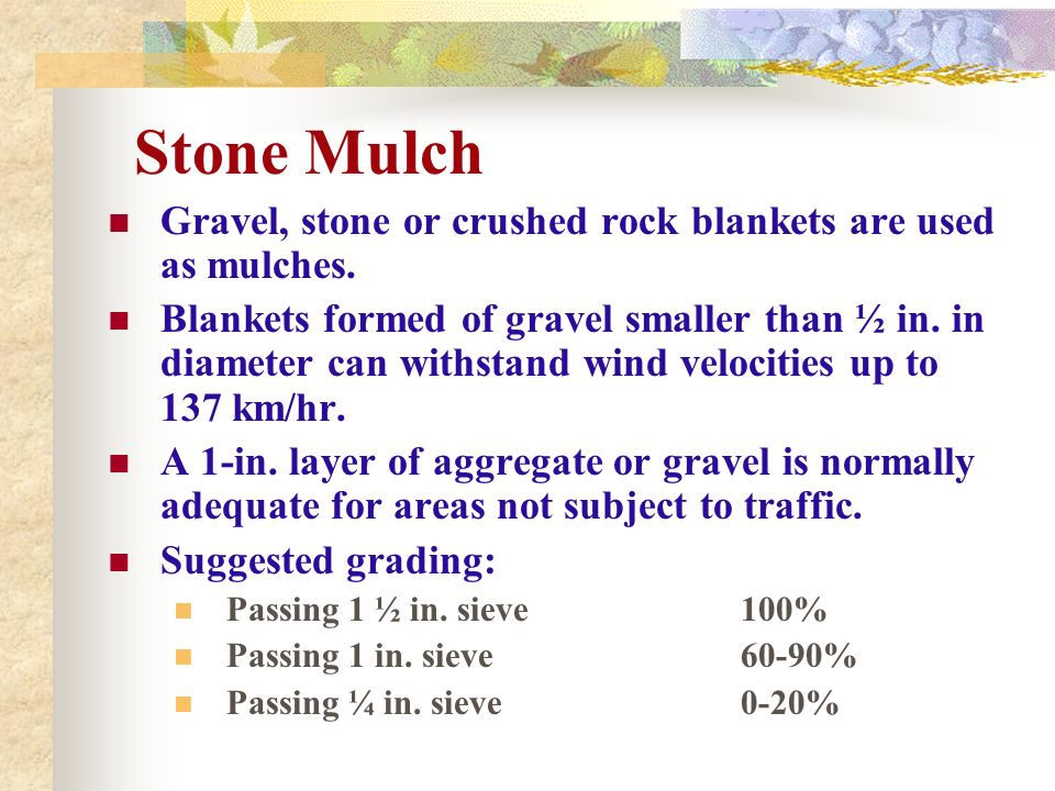 Stone Mulch Gravel, stone or crushed rock blankets are used as mulches. Blankets formed of gravel smaller than ½ in. in diameter can withstand wind ve