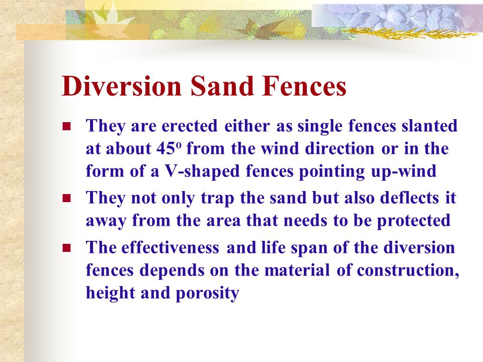 Diversion Sand Fences They are erected either as single fences slanted at about 45 o from the wind direction or in the form of a V-shaped fences point