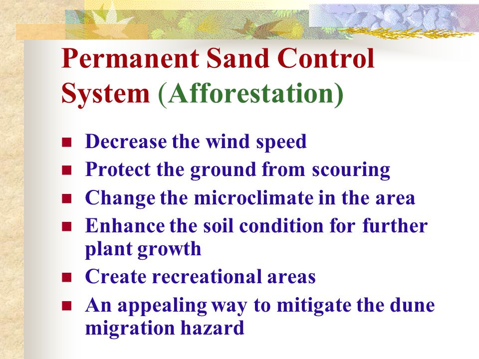 Permanent Sand Control System (Afforestation) Decrease the wind speed Protect the ground from scouring Change the microclimate in the area Enhance the