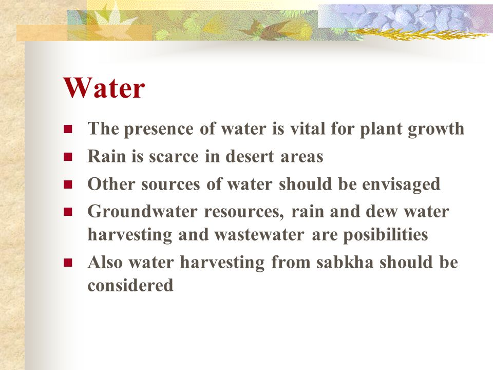 Water The presence of water is vital for plant growth Rain is scarce in desert areas Other sources of water should be envisaged Groundwater resources,