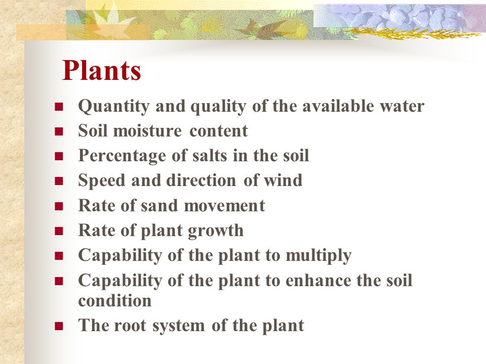 Plants Quantity and quality of the available water Soil moisture content Percentage of salts in the soil Speed and direction of wind Rate of sand move