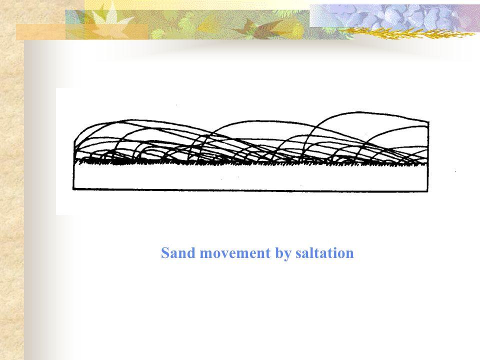Sand movement by saltation