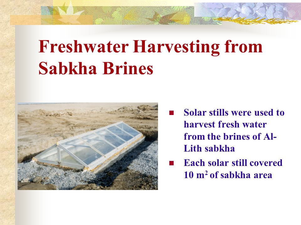 Freshwater Harvesting from Sabkha Brines Solar stills were used to harvest fresh water from the brines of Al- Lith sabkha Each solar still covered 10