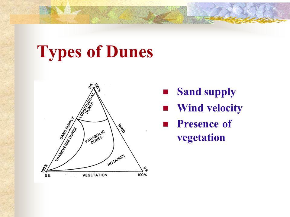 Types of Dunes Sand supply Wind velocity Presence of vegetation