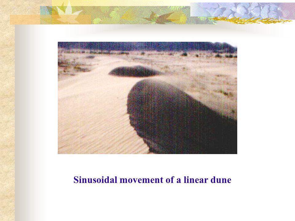 Sinusoidal movement of a linear dune