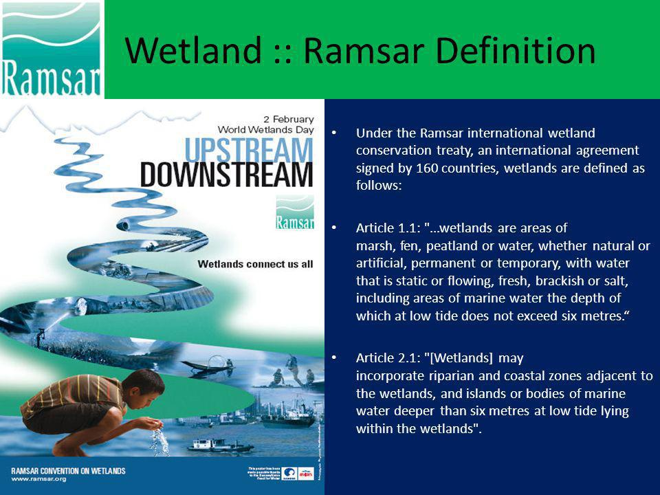 Ramsar Convention The Ramsar Convention (The Convention on Wetlands of International Importance, especially as Waterfowl Habitat) is an international treaty for the conservation and sustainable utilization of wetlands.