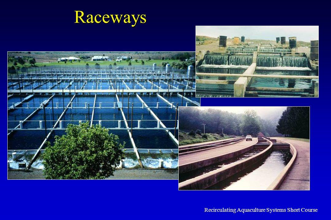 Recirculating Aquaculture Systems Short Course Raceways