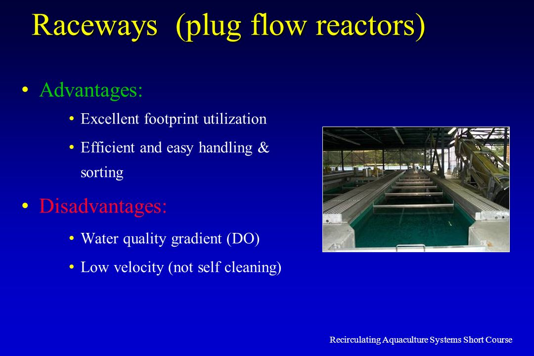 Raceways (plug flow reactors) Advantages: Excellent footprint utilization Efficient and easy handling & sorting Disadvantages: Water quality gradient