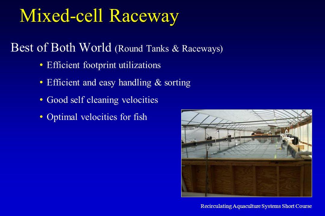 Recirculating Aquaculture Systems Short Course Mixed-cell Raceway Best of Both World (Round Tanks & Raceways) Efficient footprint utilizations Efficie