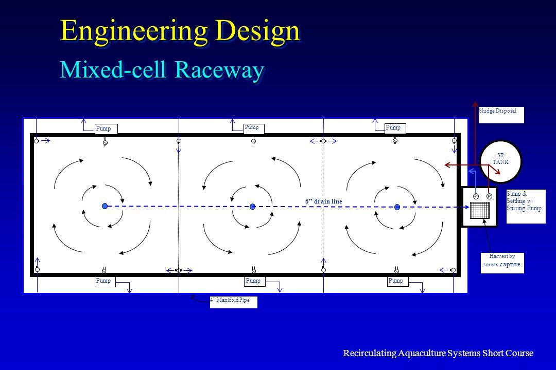 Recirculating Aquaculture Systems Short Course Engineering Design Mixed-cell Raceway Pum p 4 Manifold Pipe SR TANK Sludge Disposal Sump & Settling w/