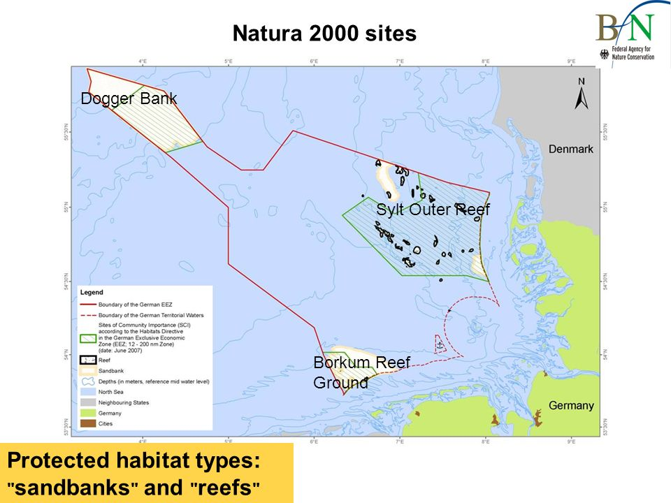 Sylt Outer Reef Protected habitat types: sandbanks and reefs Borkum Reef Ground Dogger Bank Natura 2000 sites