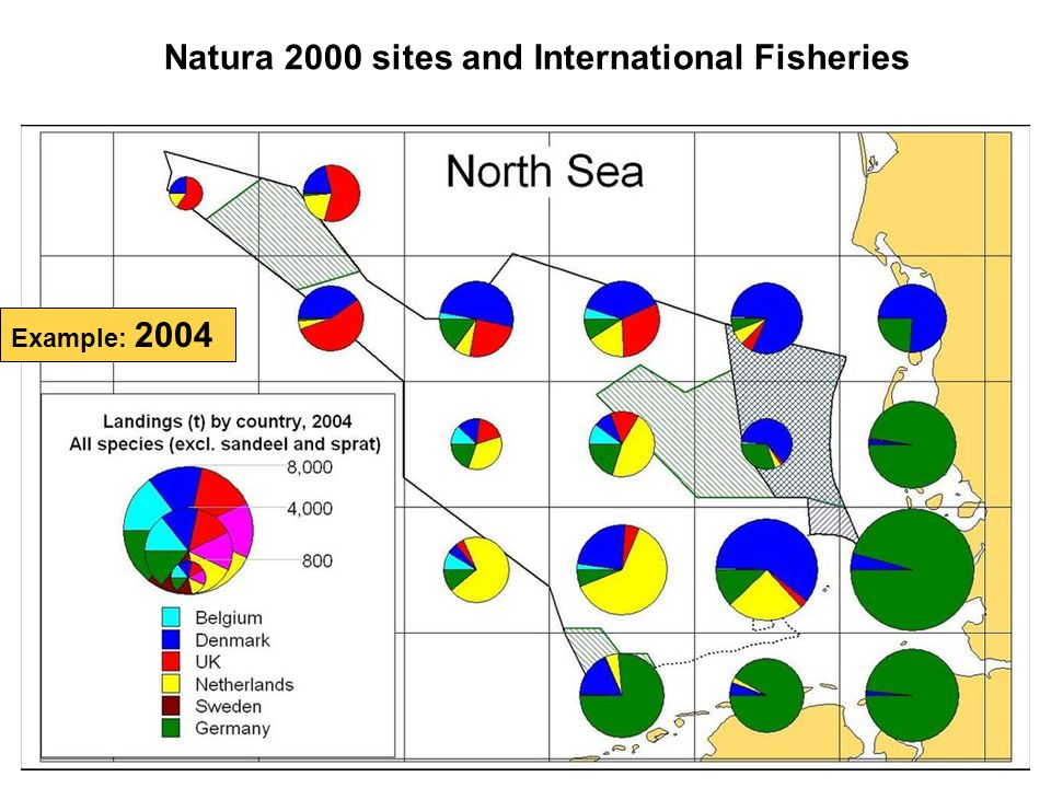 Natura 2000 sites and International Fisheries Example: 2004