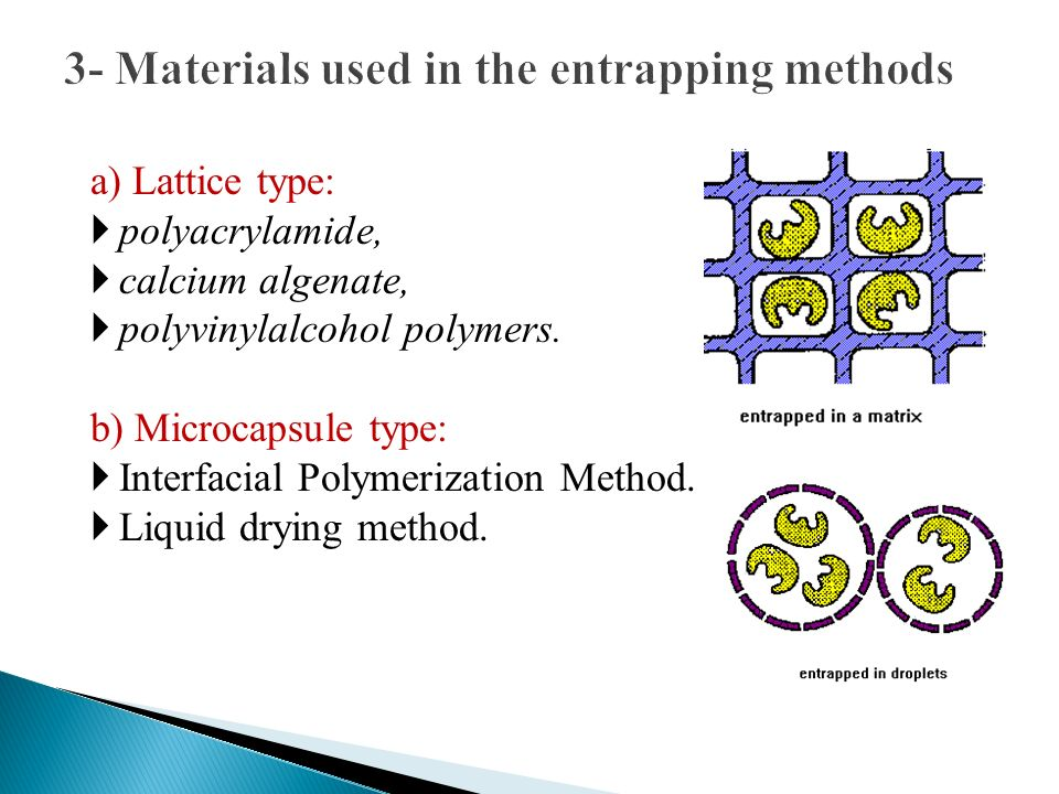 3- Materials used in the entrapping methods a) Lattice type: polyacrylamide, calcium algenate, polyvinylalcohol polymers. b) Microcapsule type: Interf