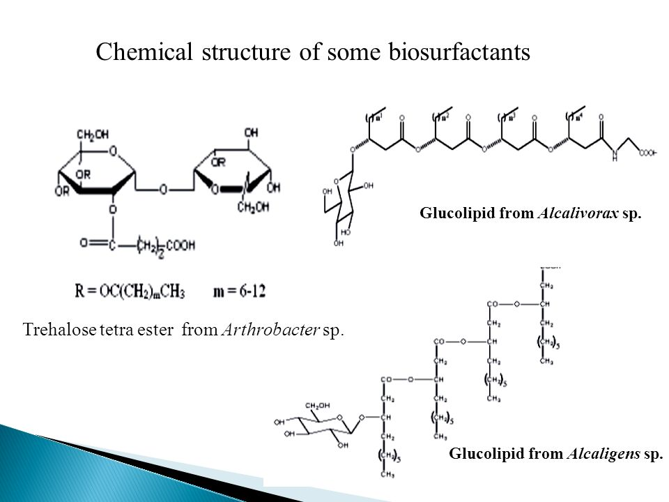Glucolipid from Alcaligens sp. Glucolipid from Alcalivorax sp. Trehalose tetra ester from Arthrobacter sp. Chemical structure of some biosurfactants