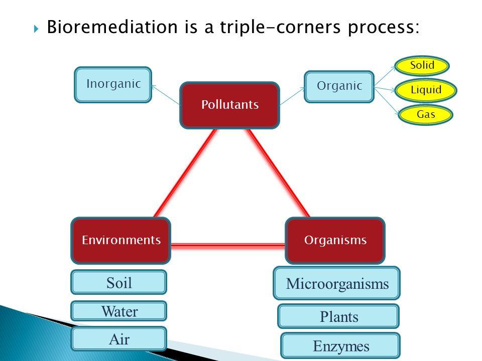 Bioremediation is a triple-corners process: Organisms Pollutants Environments Microorganisms Plants Enzymes Soil Water Air Organic Inorganic Solid Liq