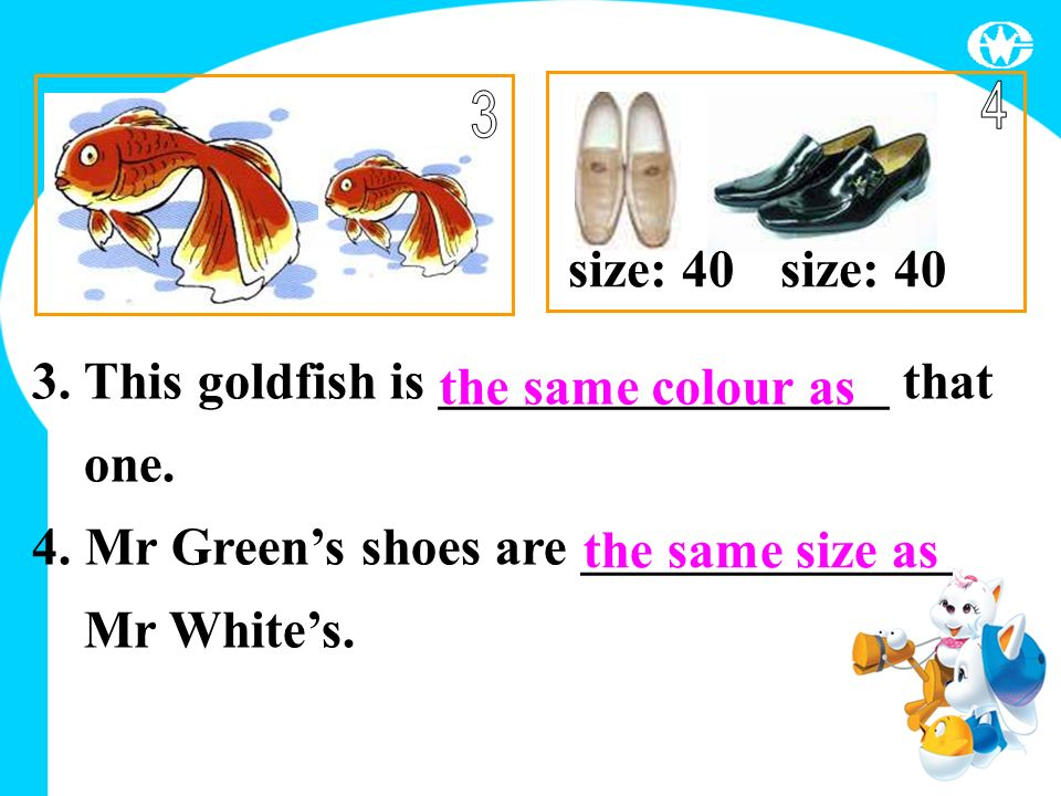 size: 40 the same size as 3. This goldfish is _________________ that one.