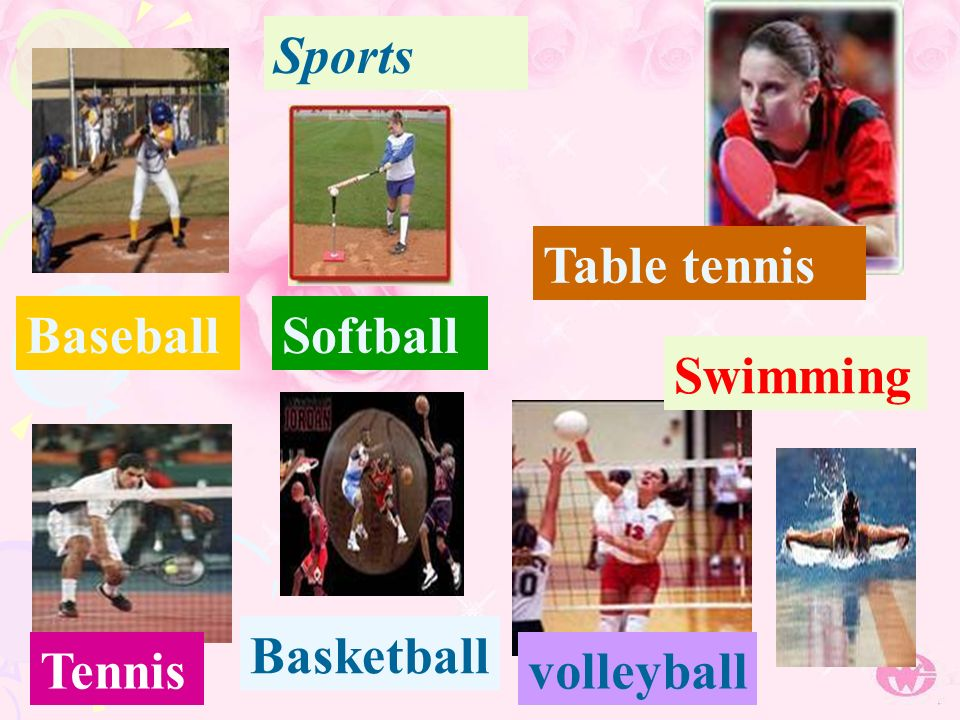 Sports BaseballSoftball Table tennis Tennis Basketball volleyball Swimming