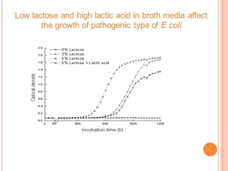 Low lactose and high lactic acid in broth media affect the growth of pathogenic type of E coli