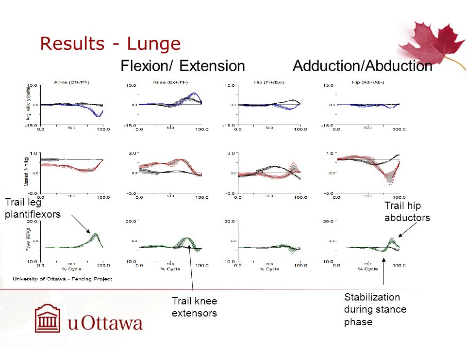 Results - Lunge Flexion/ ExtensionAdduction/Abduction Trail leg plantiflexors Trail knee extensors Stabilization during stance phase Trail hip abducto