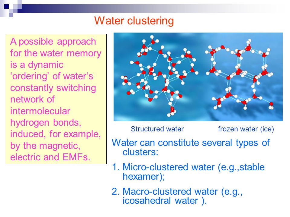 A possible approach for the water memory is a dynamic ordering of waters constantly switching network of intermolecular hydrogen bonds, induced, for example, by the magnetic, electric and EMFs..