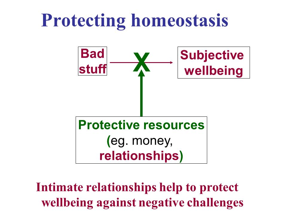 Protecting homeostasis Intimate relationships help to protect wellbeing against negative challenges Bad stuff Subjective wellbeing X Protective resources (eg.