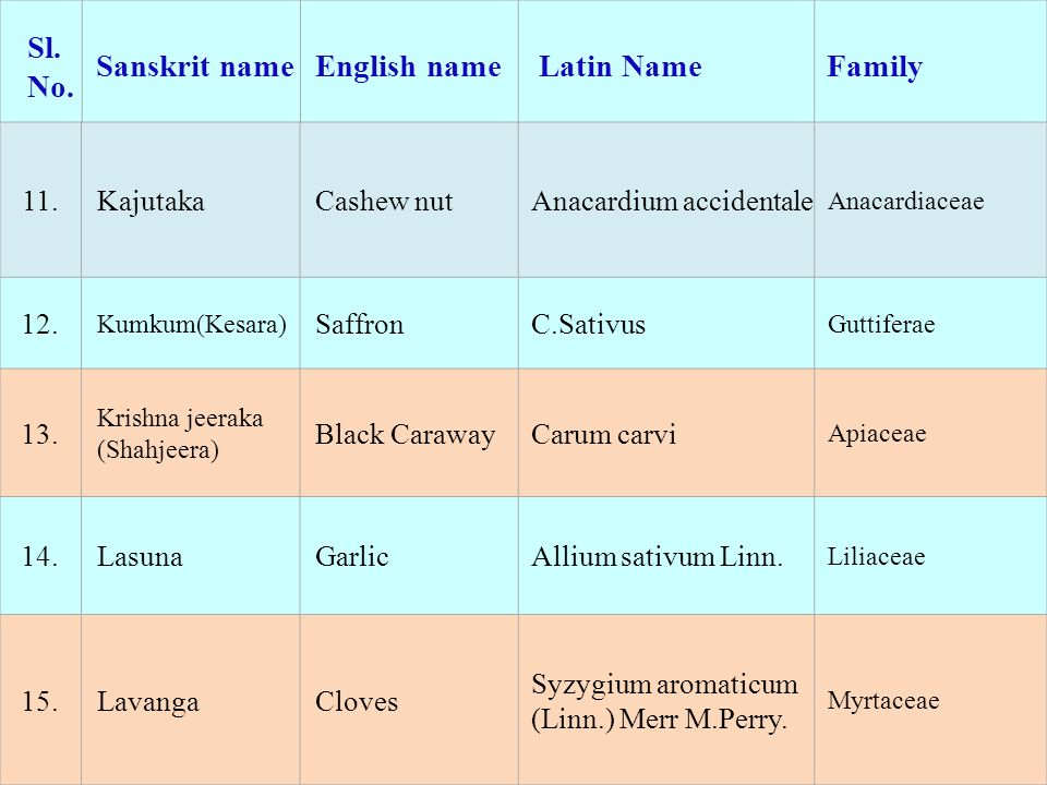 Sl. No. Sanskrit nameEnglish name Latin NameFamily 11.KajutakaCashew nutAnacardium accidentale Anacardiaceae 12. Kumkum(Kesara) SaffronC.Sativus Gutti