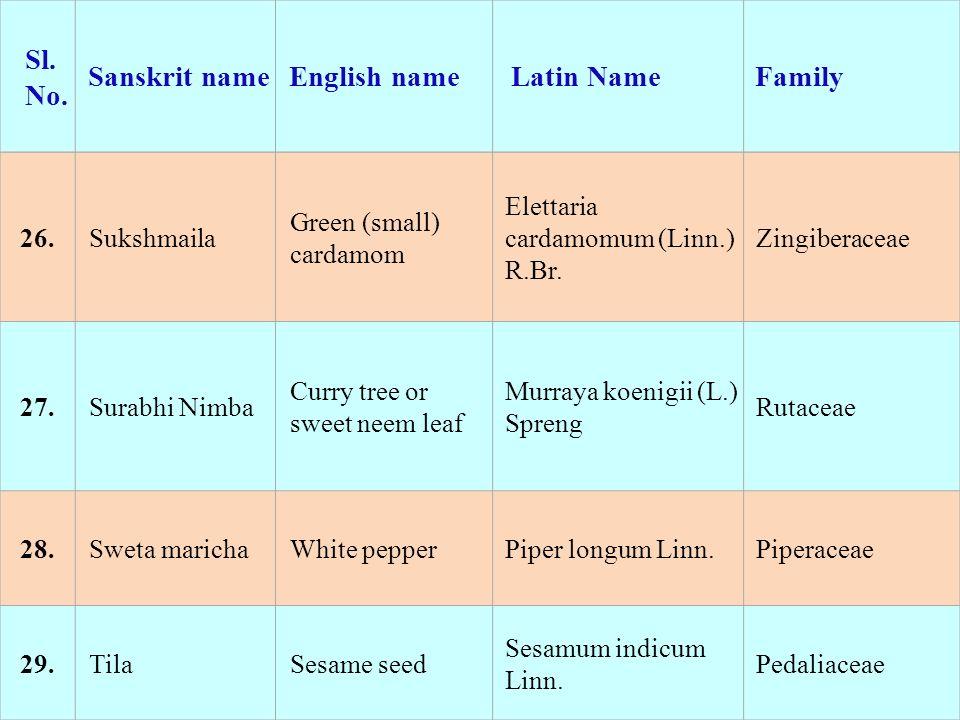 26.Sukshmaila Green (small) cardamom Elettaria cardamomum (Linn.) R.Br. Zingiberaceae 27.Surabhi Nimba Curry tree or sweet neem leaf Murraya koenigii