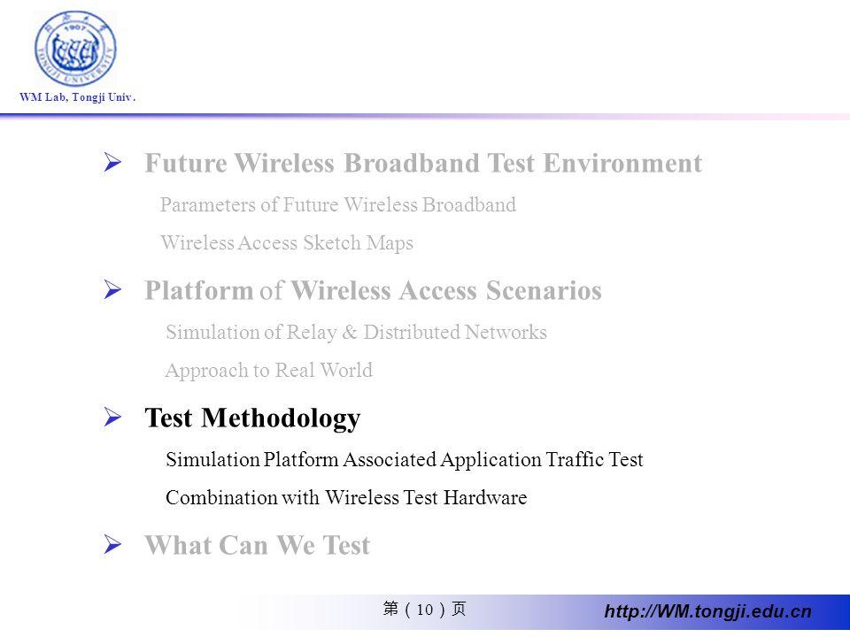 10 http://WM.tongji.edu.cn WM Lab, Tongji Univ. Future Wireless Broadband Test Environment Parameters of Future Wireless Broadband Wireless Access Ske