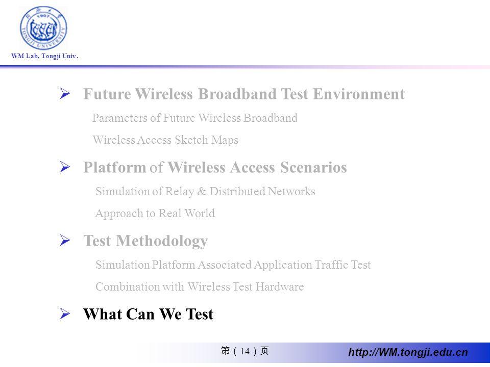 14 http://WM.tongji.edu.cn WM Lab, Tongji Univ. Future Wireless Broadband Test Environment Parameters of Future Wireless Broadband Wireless Access Ske