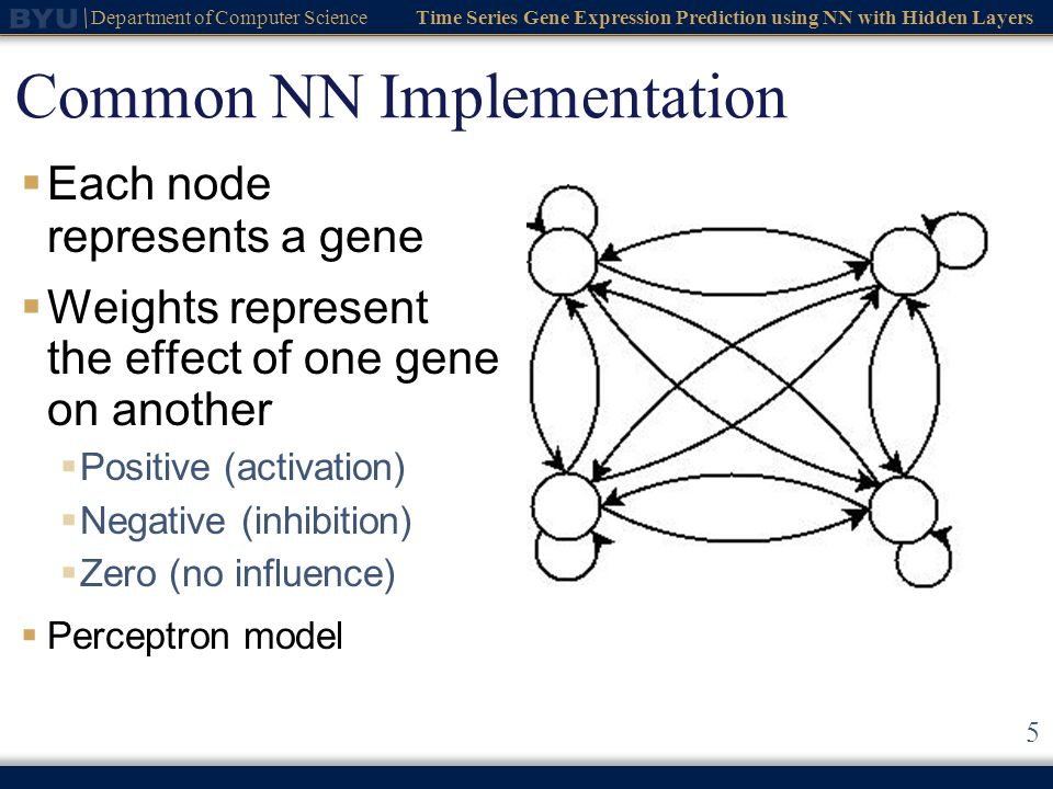 Time Series Gene Expression Prediction using NN with Hidden Layers Department of Computer Science 6 NN Model Changes Training recurrent neural network is difficult Backpropagation through time Genetic algorithms Modified the node s function Fuzzy logic Still a perceptron model