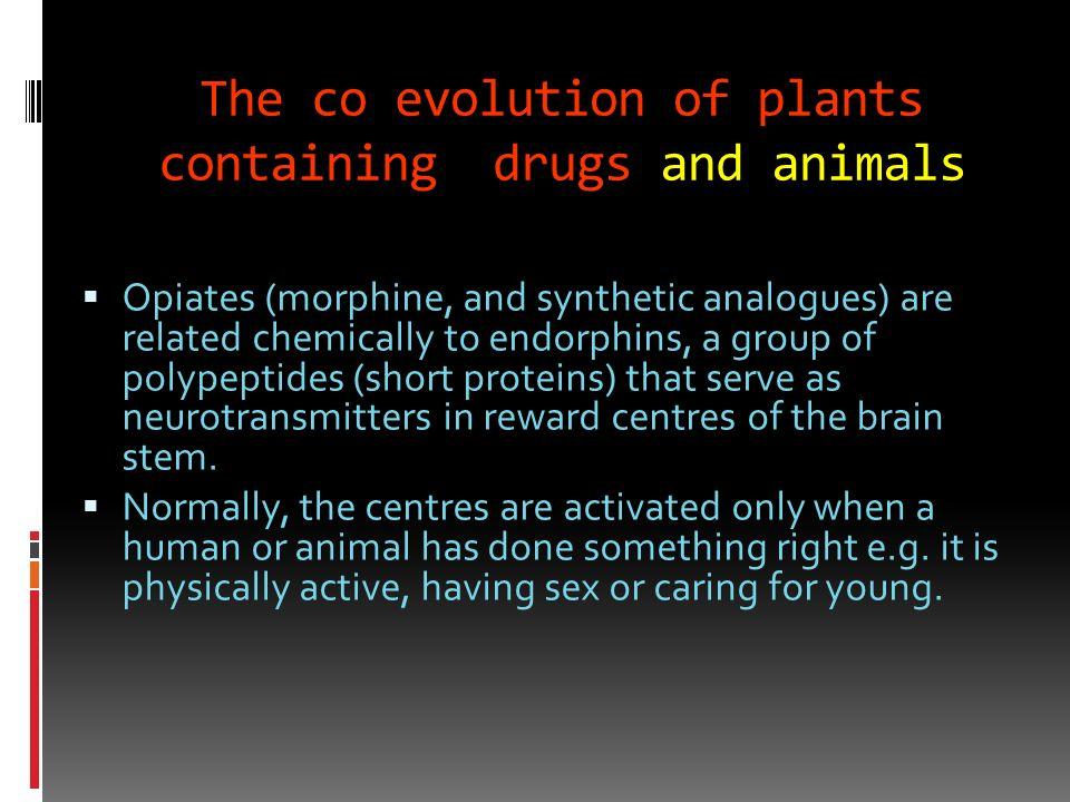 The value of stimulants?