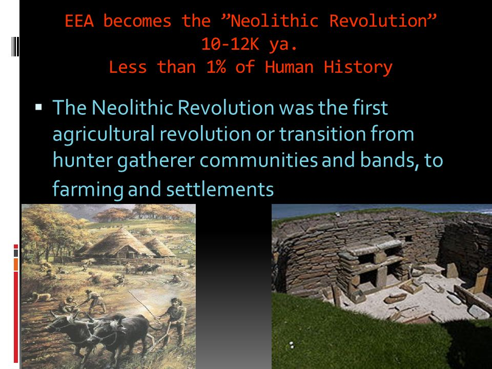 Neolithic and modern Changes During the Neolithic period farming etc. would transform the small, mobile and fairly egalitarian groups of hunter-gather
