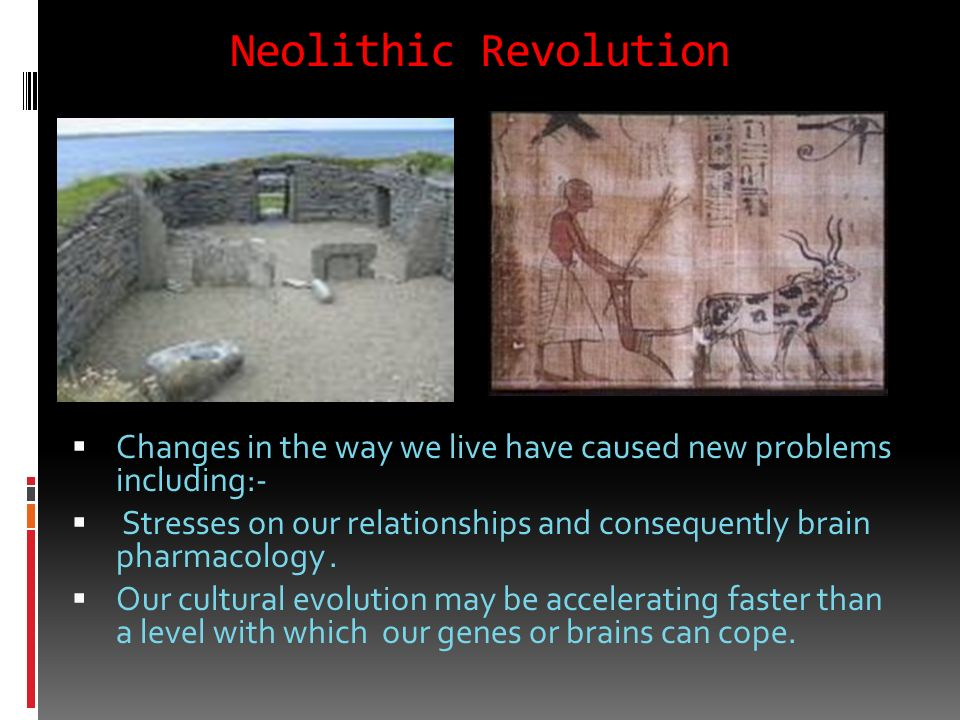 EEA becomes the Neolithic Revolution 10-12K ya. Less than 1% of Human History The Neolithic Revolution was the first agricultural revolution or transi