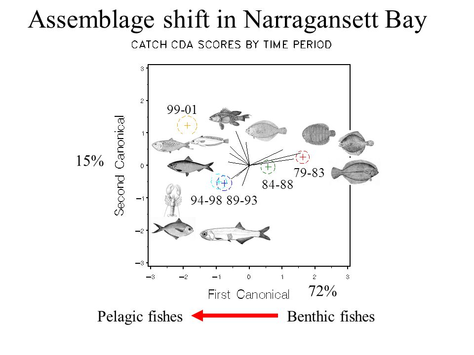 Benthic fish – tend to decline Demersal – no change or decline Pelagic – tend to increase