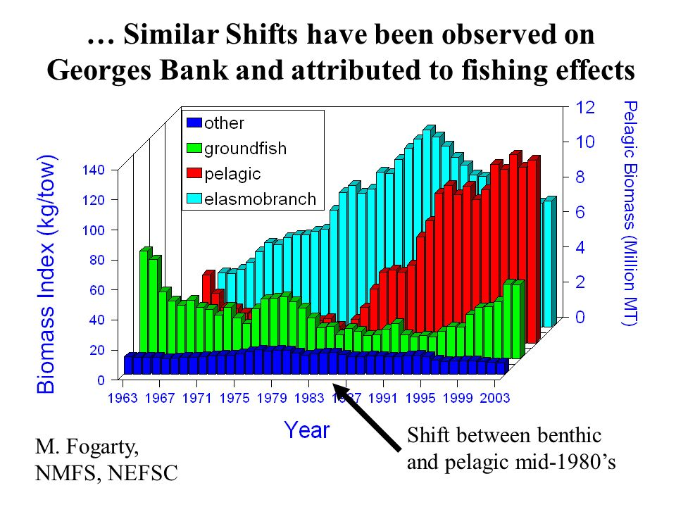 … Similar Shifts have been observed on Georges Bank and attributed to fishing effects M.