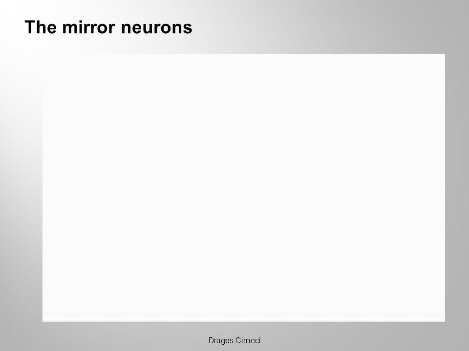 The mirror neurons Dragos Cirneci