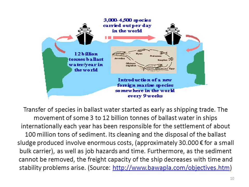Transfer of species in ballast water started as early as shipping trade. The movement of some 3 to 12 billion tonnes of ballast water in ships interna