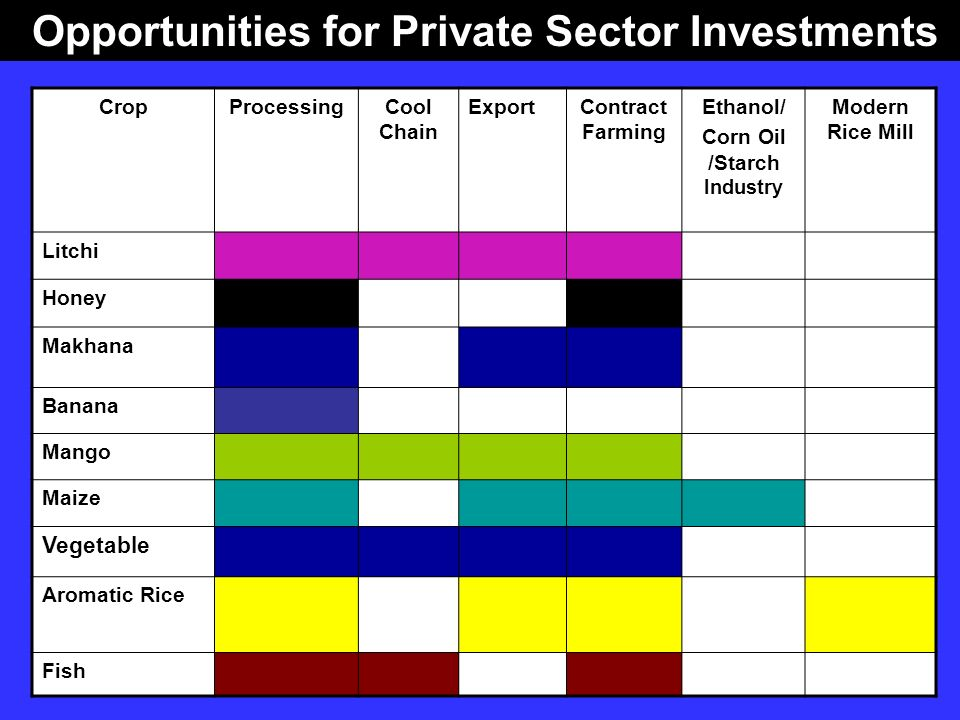 Opportunities for Private Sector Investments CropProcessingCool Chain ExportContract Farming Ethanol/ Corn Oil /Starch Industry Modern Rice Mill Litch