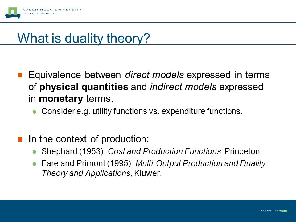 What is duality theory.