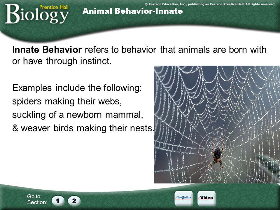 Go to Section: Animal Behavior-Innate Innate Behavior refers to behavior that animals are born with or have through instinct. Examples include the fol