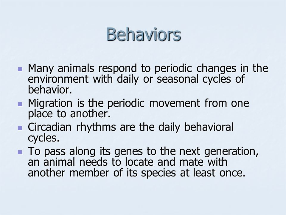 Behaviors Many animals respond to periodic changes in the environment with daily or seasonal cycles of behavior. Many animals respond to periodic chan