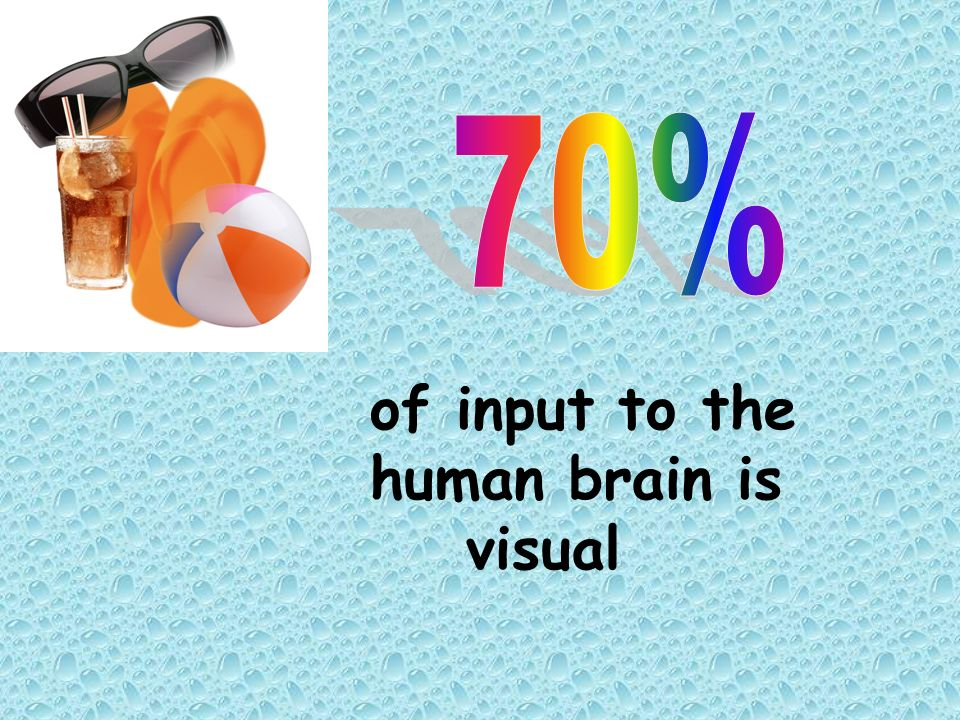of input to the human brain is visual