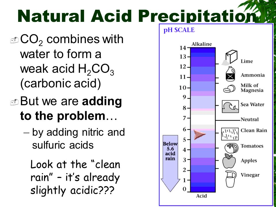 Natural Acid Precipitation CO 2 combines with water to form a weak acid H 2 CO 3 (carbonic acid) But we are adding to the problem… –by adding nitric a