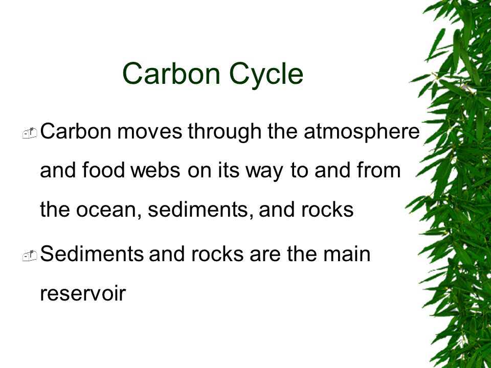 Carbon Cycle Carbon moves through the atmosphere and food webs on its way to and from the ocean, sediments, and rocks Sediments and rocks are the main