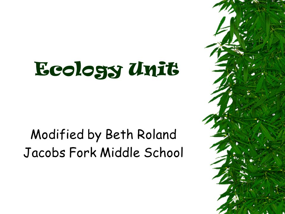 Ecology Unit Modified by Beth Roland Jacobs Fork Middle School