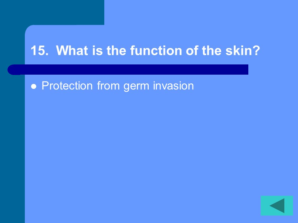 14. Whats the outermost layer of the epidermis Stratum corneum